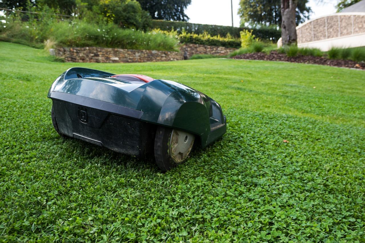 Robot koszący - czy warto go mieć w swoim ogrodzie?