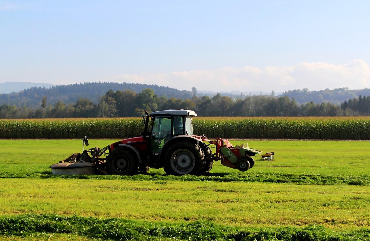 Maszyny ogrodnicze Briggs&Stratton - czym się wyróżniają?