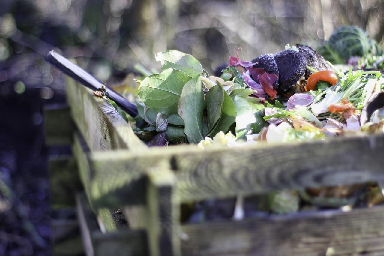 Dlaczego warto mieć w ogrodzie pojemnik na odpady i kompost?