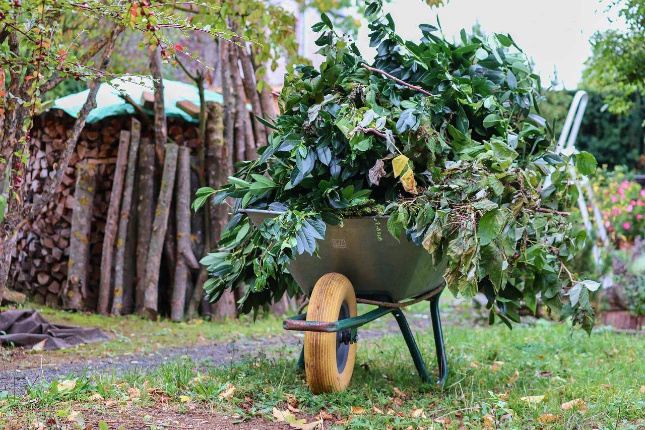maszyny ogrodnicze