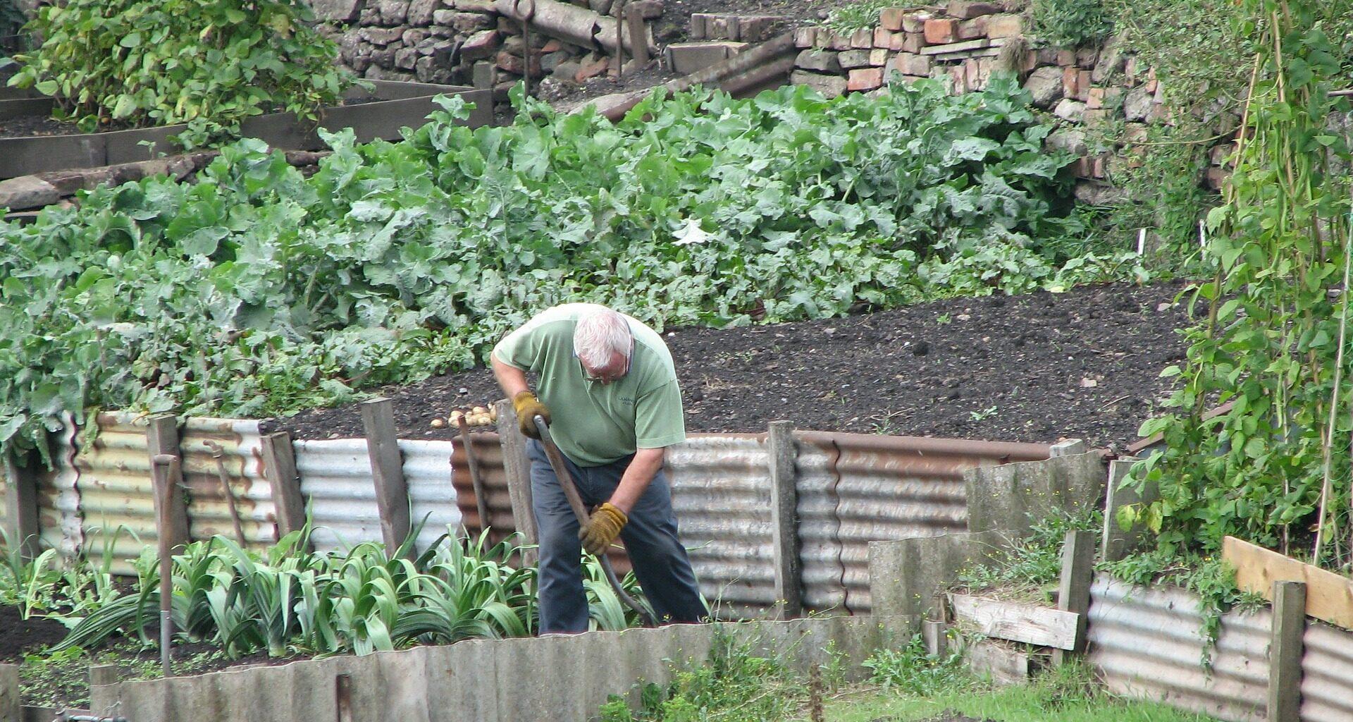 Kultywator w ogrodzie. Jakie ma zastosowanie?